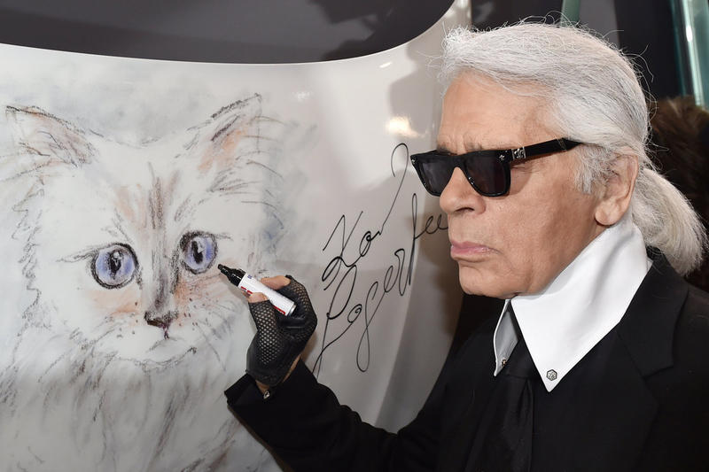 Karl Lagerfeld's Cat Choupette Could Be the 'Heiress' of His $200 Million Wealth images instagram info fashion chanel fendi