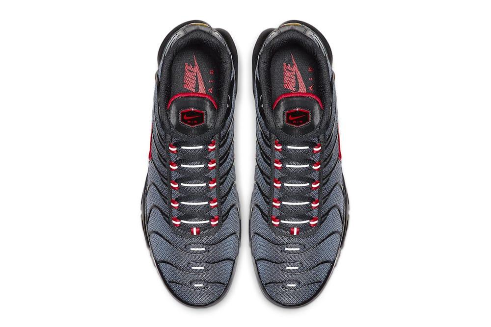 Nike Air Max Plus Monotone Gradient