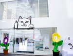 A Look Inside the New RIPNDIP Tokyo Flagship Store