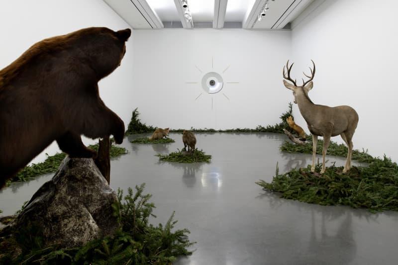 Gabriel Rico The Discipline of the Cave Exhibition Inside Look Aspen Art Museum