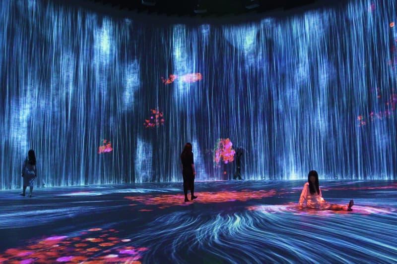 teamlab tank shanghai immersive installation artworks design studio