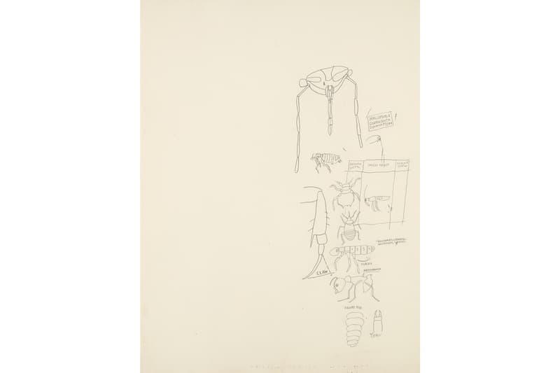 matt dike phillips auction jean michel basquiat paintings self portrait