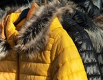 New York City Proposes to Ban Sale of Fur