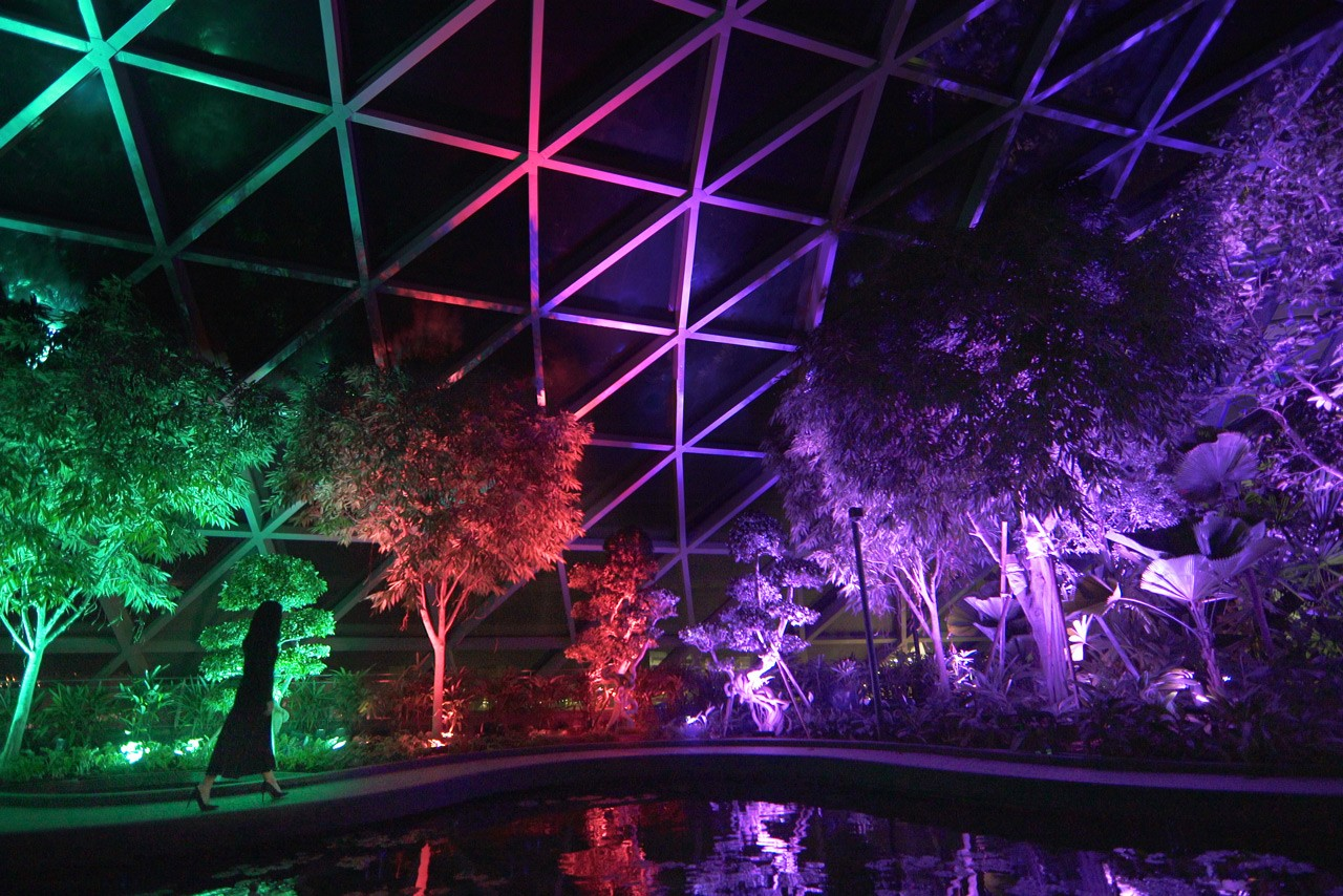 jewel changi airport singapore teamlab team lab artwork installations resonating forest resonating trees