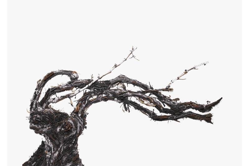 vik muniz shared roots photographs frieze new york ruinart artwork installations