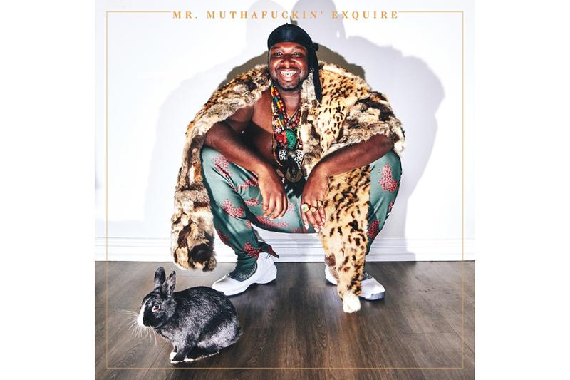 Mr. Muthafuckin' eXquire Self-Titled LP Chocalate Rabbit Mr. MFN