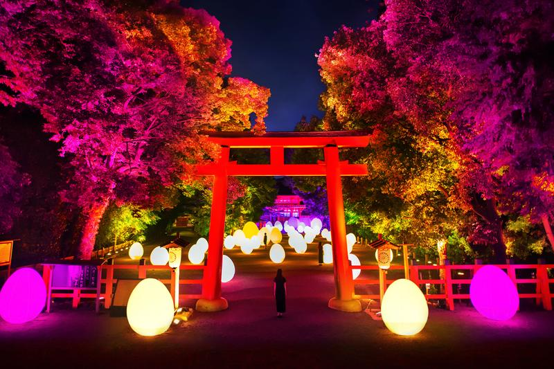 teamlab shimogamo shrine kyoto digitized forest nature art exhibition world heritage site