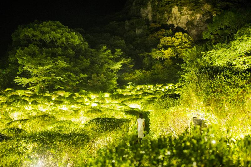 teamLab Mifuneyama Rakuen Park Immersive Exhibition A Forest Where Gods Live humans nature interactions Floating Resonating Lamps Drawing on the Water Surface Created by the Dance of Koi and Boats Ever Blossoming Life Rock Universe of Water Particles on a Sacred Rock The Floating Tree