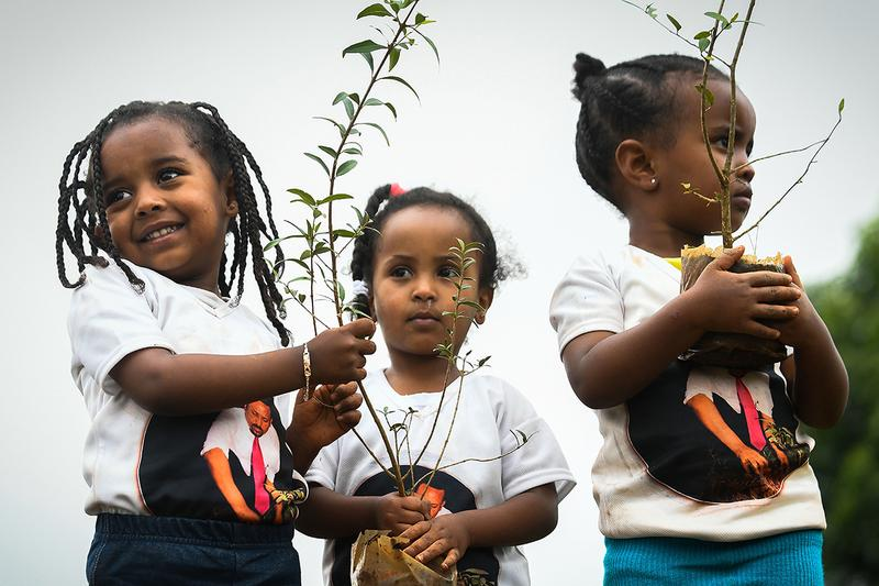 Ethiopia Plants 353 Million Trees in 12 Hours Prime Minister Abiy Ahmed reforestation eco friendly environment climate change