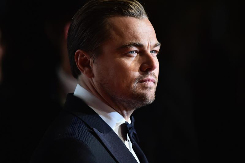 Leonardo DiCaprio Pledges $5 Million USD to Amazon Forest Fund forest fires environment global warming climate change brazil
