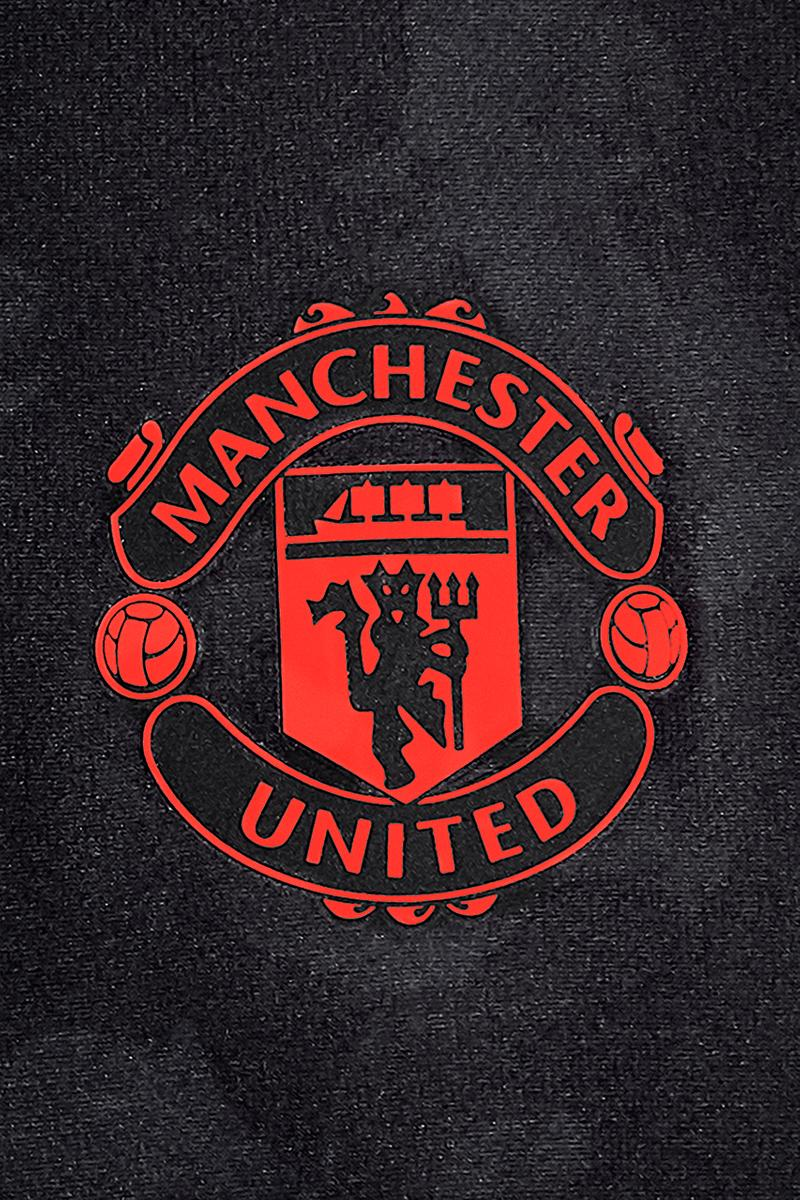 Download Manchester United Logo 2020