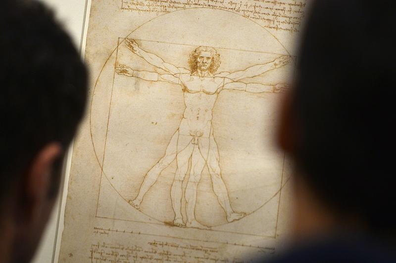 leonardo da vinci vitruvian man drawing the louvre paris france artworks