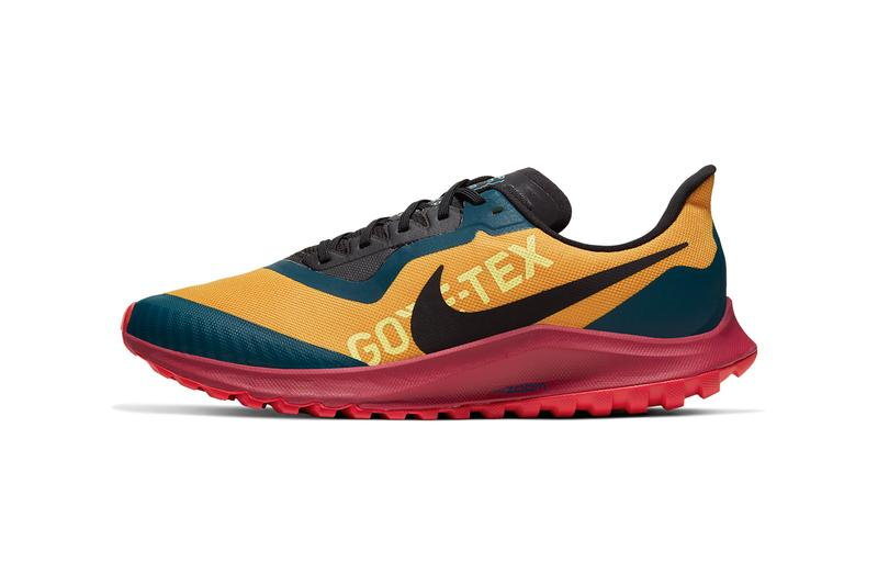 lowest price on feet images of new high quality Nike Pegasus 36 Trail GORE-TEX