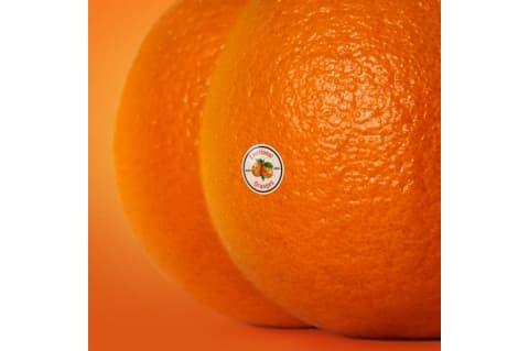 Emotional Oranges The Juice Vol. II