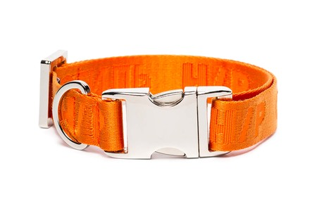 Heron Preston Drops Orange Buckled Dog Collar