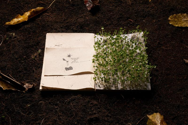 the boy who could not wait book eco friendly paper silkscreened recycled green around the corner concept store vietnam teach children patience garden growth