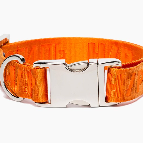 Heron Preston Orange Buckled Dog Collar