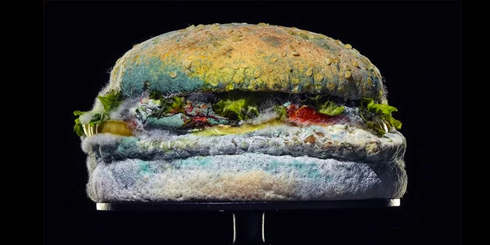 Burger King's Latest Ad Campaign Showcases a Moldy Whopper