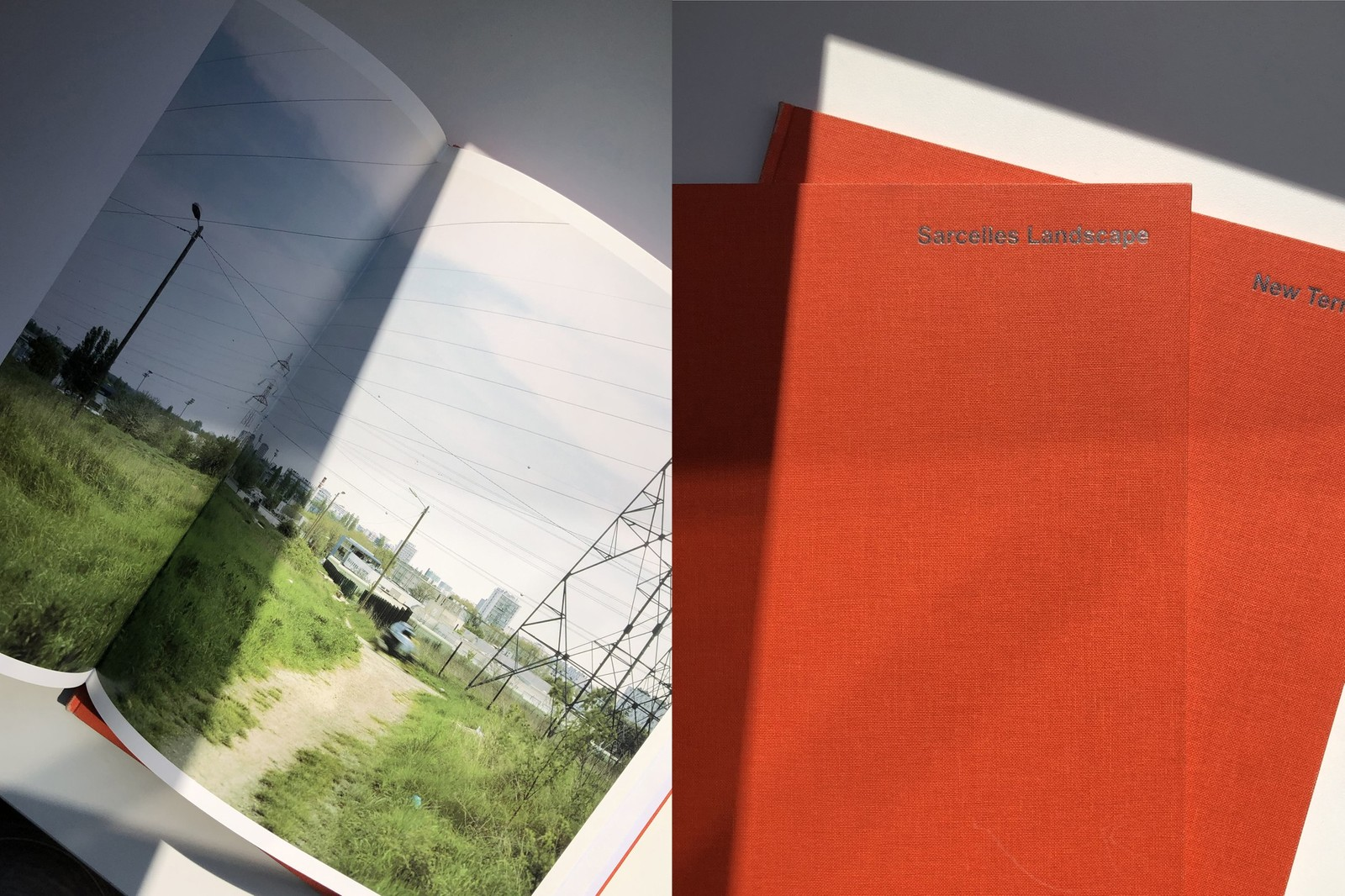 Andrzej Steinback Figur I, Figur II art books etudes  Erica Overmeer Sarcelles Landscape Christopher Williams Printed in Germany Johannes Schwartz The Athens Recorder Paul Graham The whiteness of the whale Roni Horn You are the weather Hayahisa Tomiyasu TTP