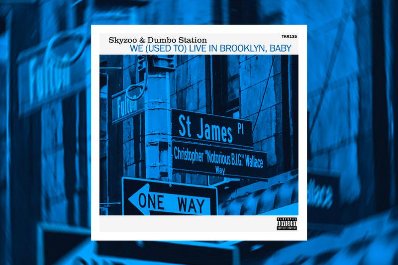Skyzoo Dumbo Station We Used To Live In Brooklyn Baby Single Stream the bluest note