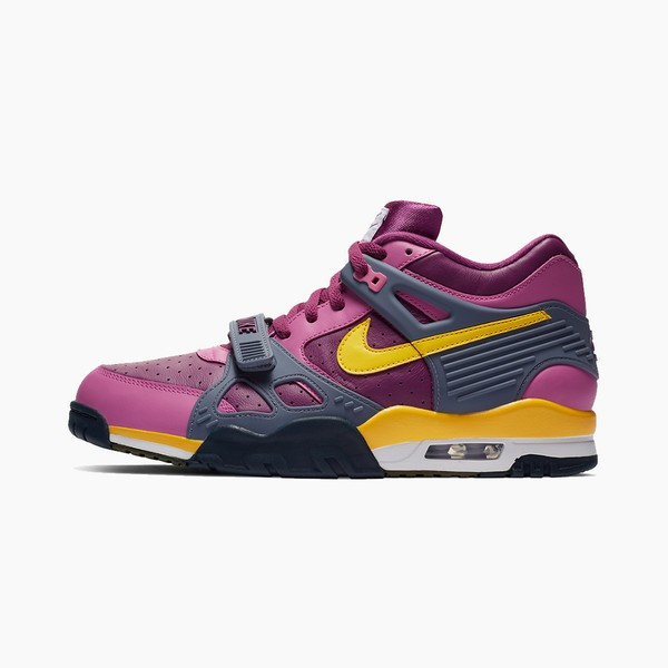 "Nike Air Trainer 3 ""Viotech"""