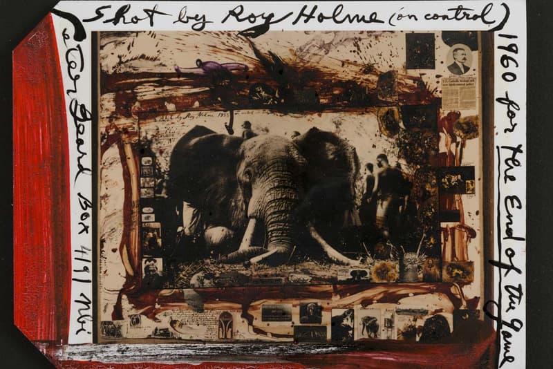 artnet auctions peter beard archival sale art works african wildlife photography