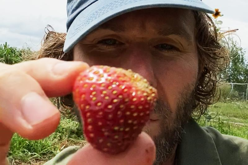 dan colen strawberry jam sky high farm hypebeast how to video