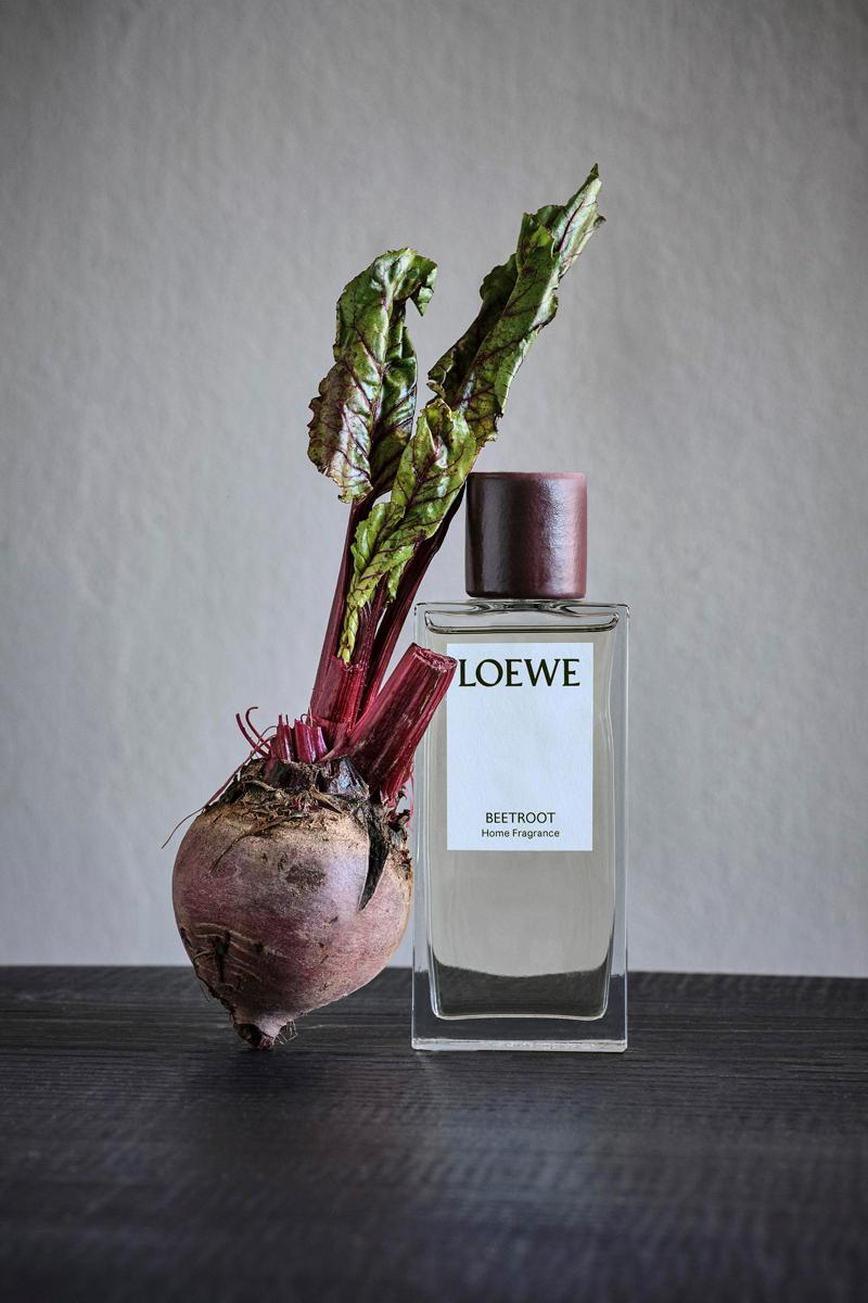 LOEWE Plant-Based Home Scents Collection candles wax candleholders home fragrances rattan diffusers gardens plants
