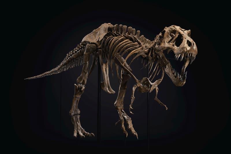 christies Tyrannosaurus rex skeleton auction