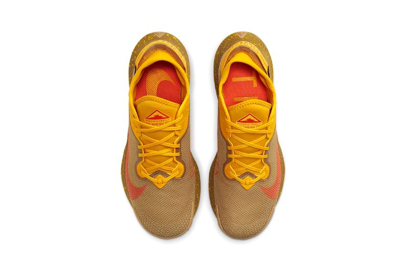 nike running Pegasus Trail 2 gore-tex dark sulphur orange red beige winter running shoes trainers trial