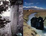 How Do You Trace a Century of the Great Outdoors? Look at the Catalogs
