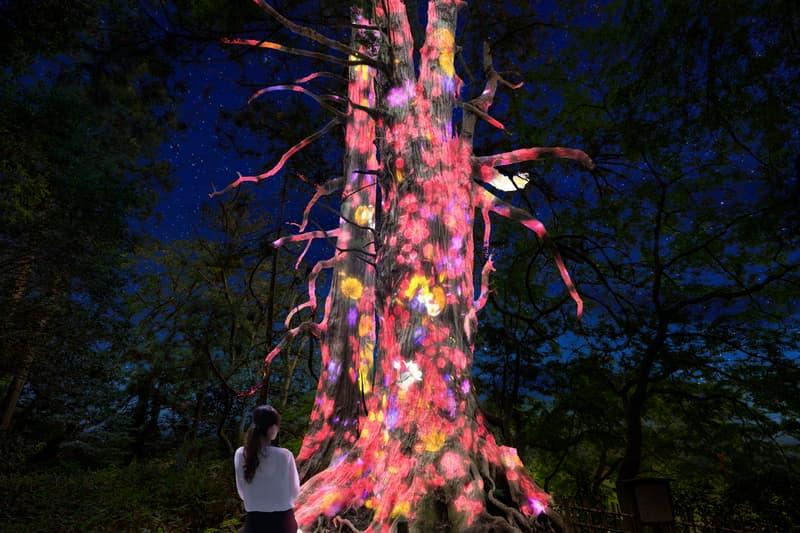teamlab digitized kairakuen garden installation light sculptures artworks