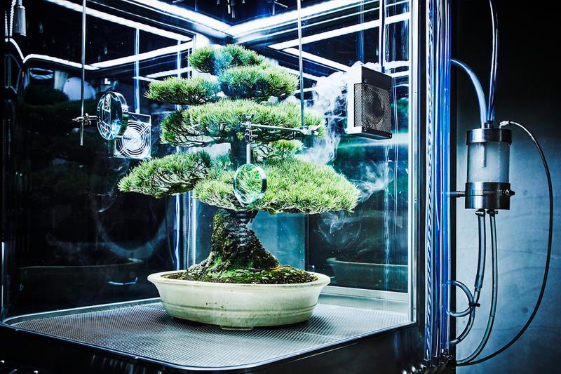 Azuma Makoto Paludarium Tachiko Yasutoshi Exhibit Display StandBy Tokyo Environment Flower Artist