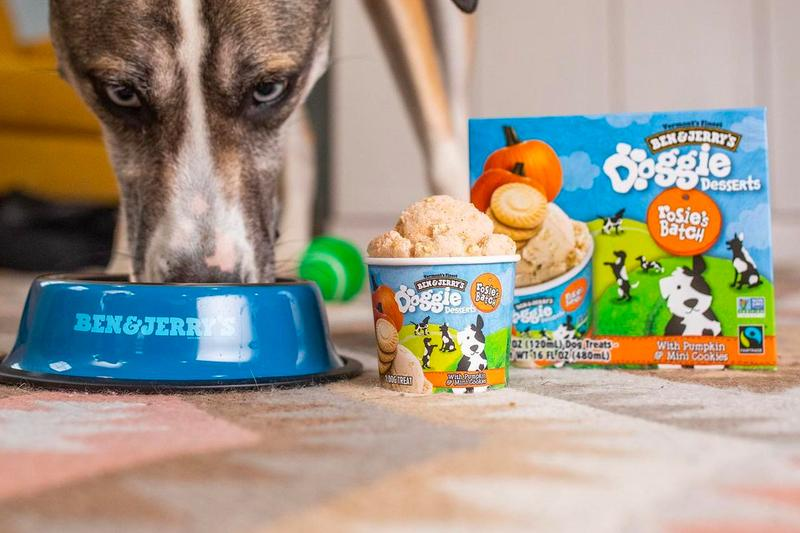 Ben & Jerry's Doggie Desserts Launch Rosie's Batch Pontch's Mix Info Buy Price Taste Review dogs