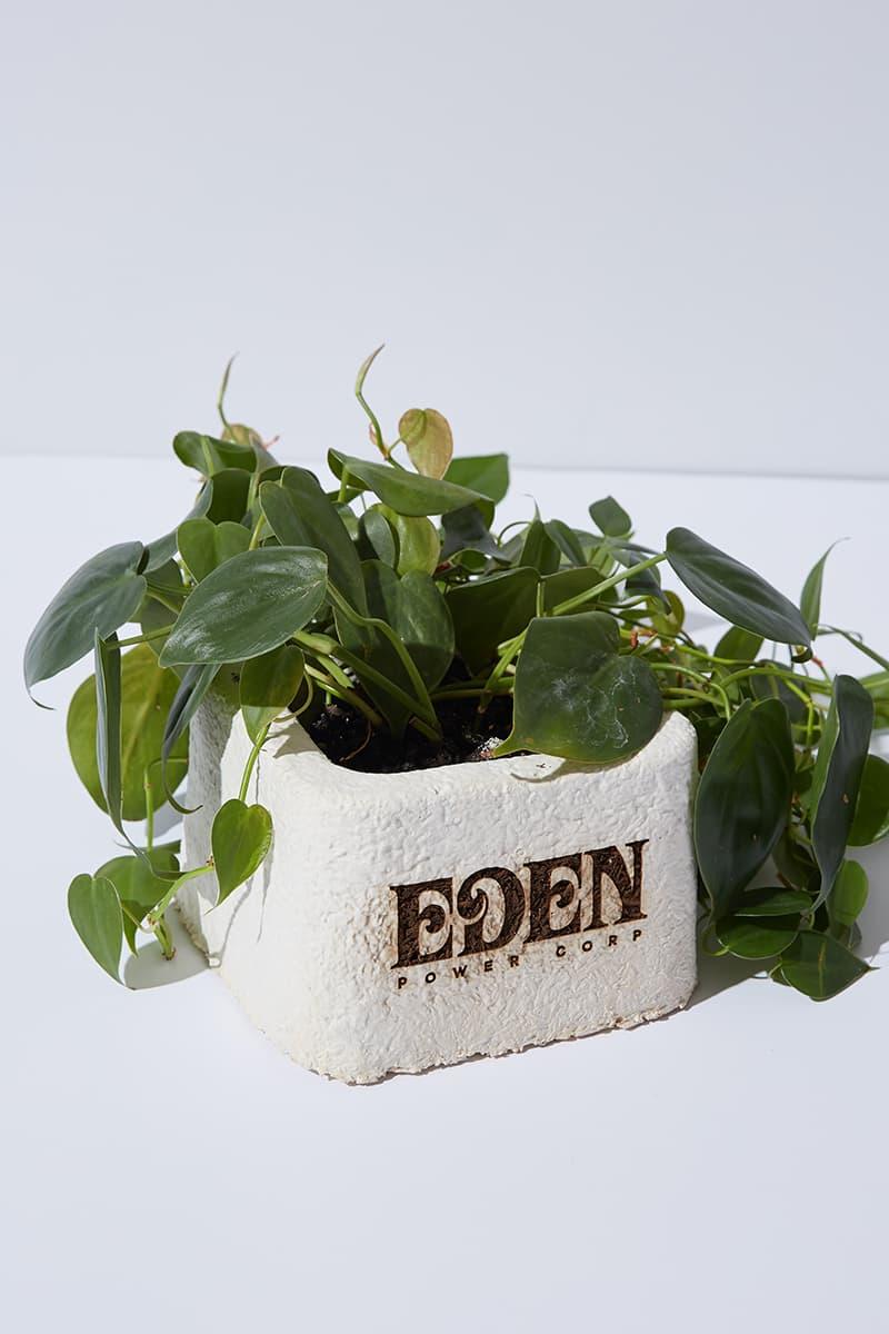 EDEN Power Corp Amadou Mushroom Hat Release Info Buy Price Environment Sustainability