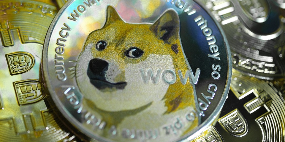 Elon Musk Calls for Dogecoin Holders To