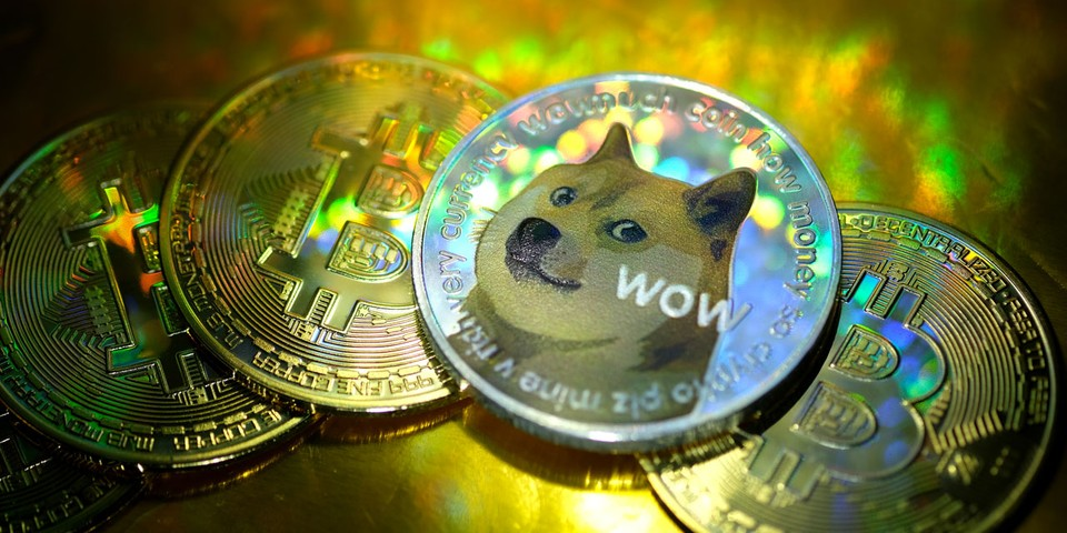 People on Reddit Are Celebrating Becoming Dogecoin Millionaires