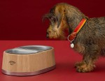 Hermès' $1,140 USD Dog Bowl Was Crafted Using Traditional Barrel-Making Techniques