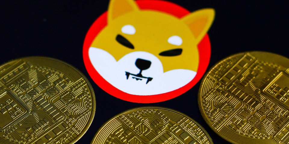 Someone's Purchase of $8,000 USD Worth of Shiba Inu Coin Last Year Now Worth $6 Billion USD