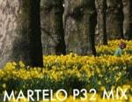 Martelo – P32 March mix