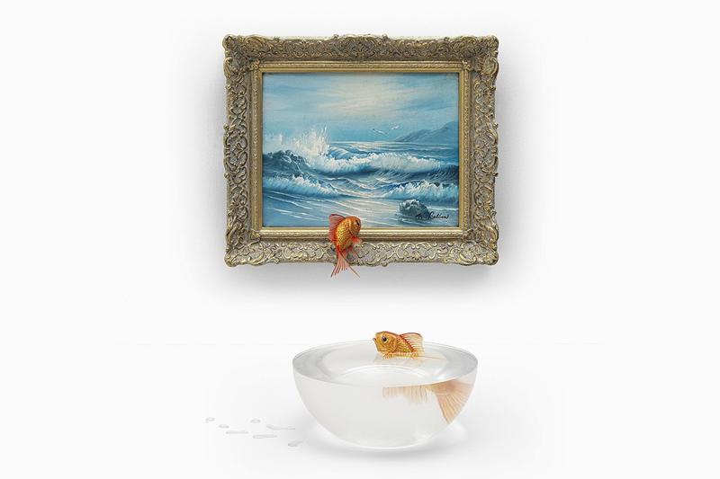 Photos oeuvres Banksy