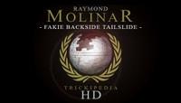 TRICKIPEDIA -- Fakie Backside Tailslide