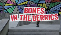 BONES IN THE BERRICS