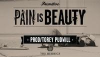 PAIN IS BEAUTY -- Paul Rodriquez - Torrey Pudwill - Jereme Rogers & More