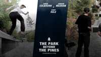 THE PARK BEYOND THE PINES