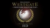 TRICKIPEDIA -- Frontside Halfcab Flip