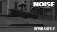 NOISE -- Daylando's Kevin Shealy