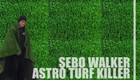 SEBO WALKER -- Astro Turf Killer