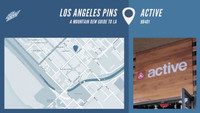 LOS ANGELES PINS -- Active