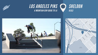 LOS ANGELES PINS -- Sheldon